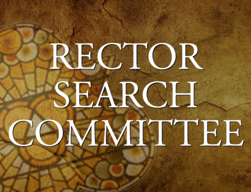 Rector Search Committee update