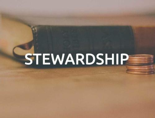Year-Round Stewardship workshop offered in Pulaski